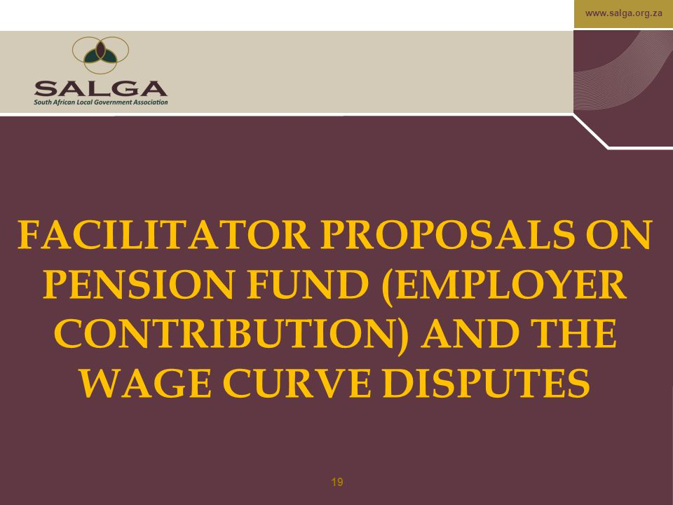 FACILITATOR PROPOSALS ON PENSION FUND (EMPLOYER CONTRIBUTION) AND THE WAGE CURVE DISPUTES
