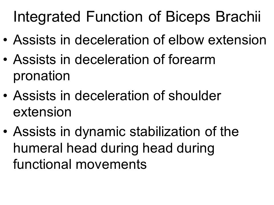 Integrated Function of Biceps Brachii