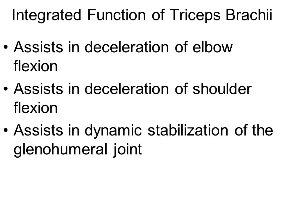 Integrated Function of Triceps Brachii
