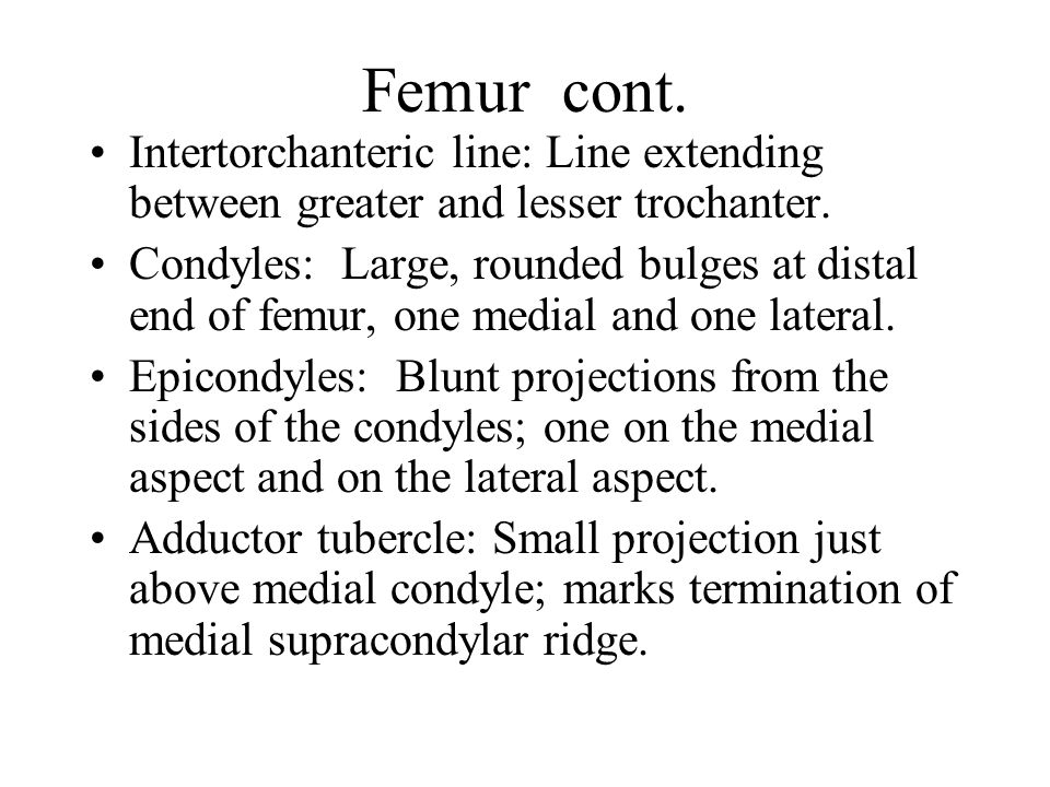 Femur cont. Intertorchanteric line: Line extending between greater and lesser trochanter.