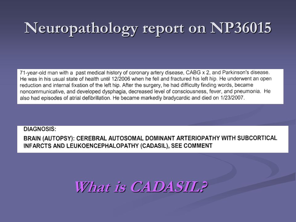 Neuropathology report on NP36015