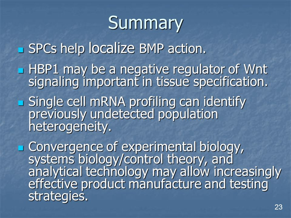 Summary SPCs help localize BMP action.