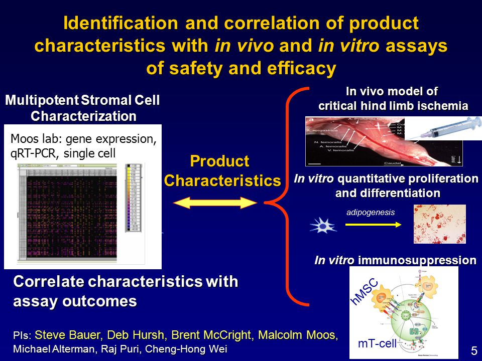 Identification and correlation of product characteristics with in vivo and in vitro assays of safety and efficacy