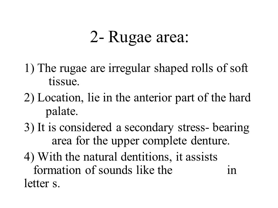 2- Rugae area: 1) The rugae are irregular shaped rolls of soft tissue.