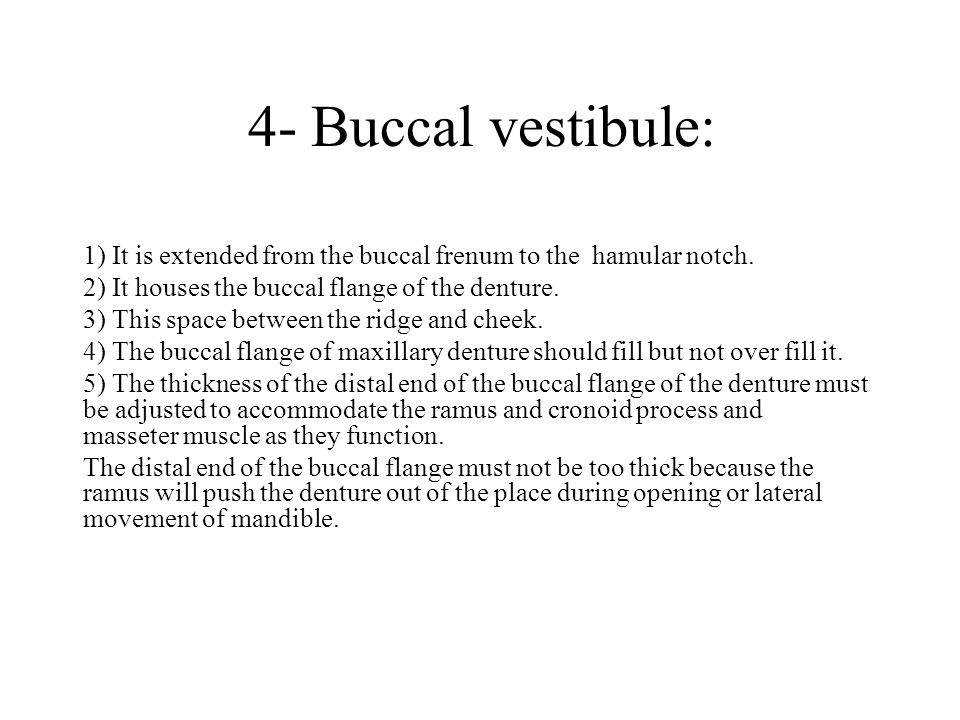 4- Buccal vestibule: 1) It is extended from the buccal frenum to the hamular notch. 2) It houses the buccal flange of the denture.