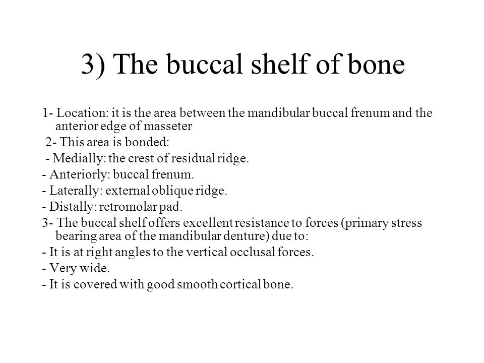 3) The buccal shelf of bone