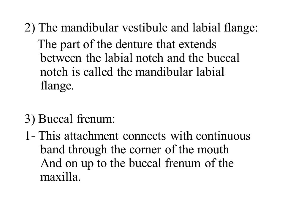 2) The mandibular vestibule and labial flange: