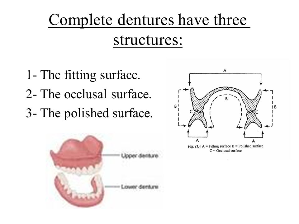 Complete dentures have three structures: