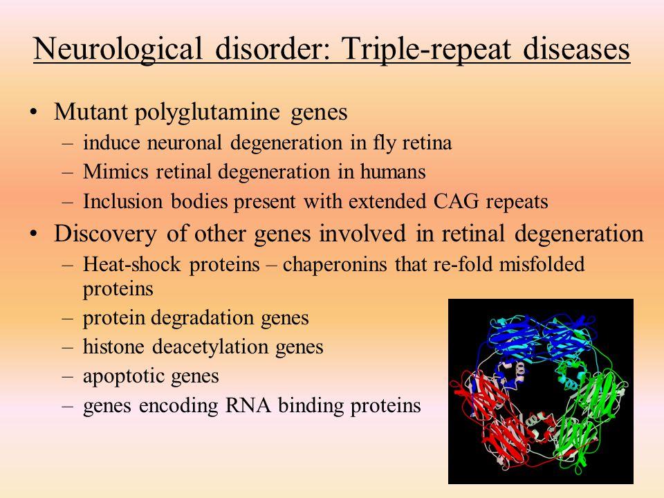 Neurological disorder: Triple-repeat diseases
