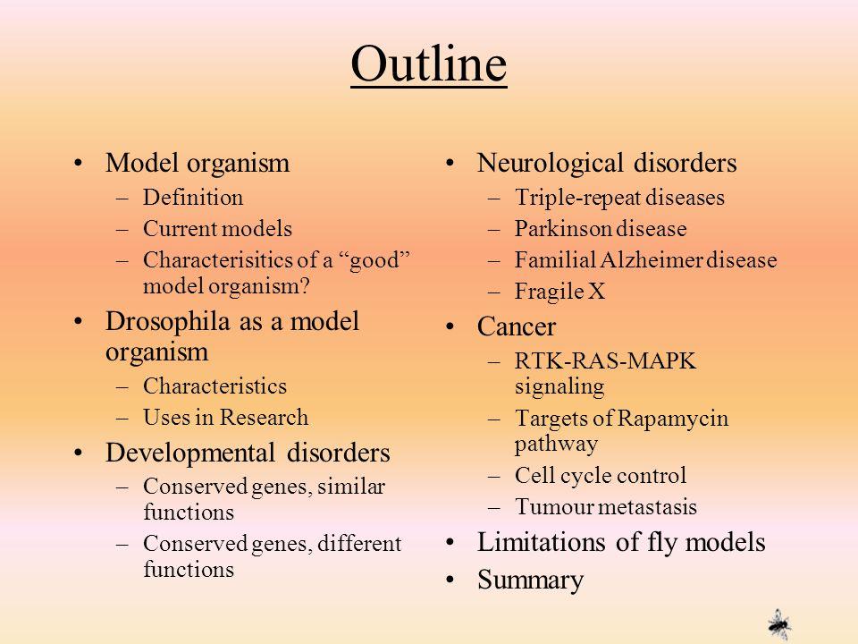 Outline Model organism Drosophila as a model organism