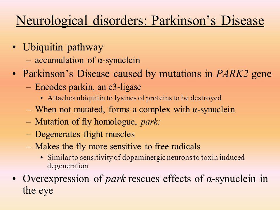 Neurological disorders: Parkinson's Disease
