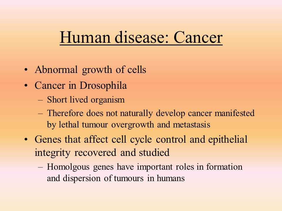 Human disease: Cancer Abnormal growth of cells Cancer in Drosophila