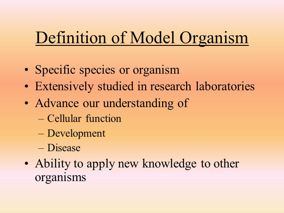 Definition of Model Organism