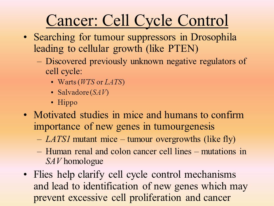 Cancer: Cell Cycle Control