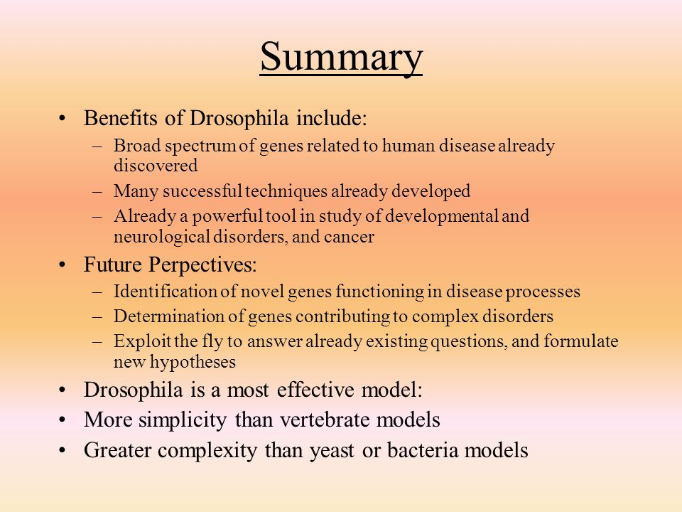 Summary Benefits of Drosophila include: Future Perpectives: