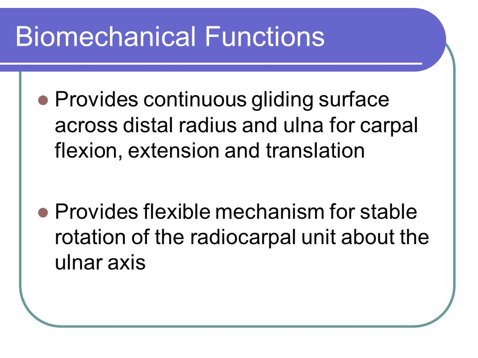 Biomechanical Functions