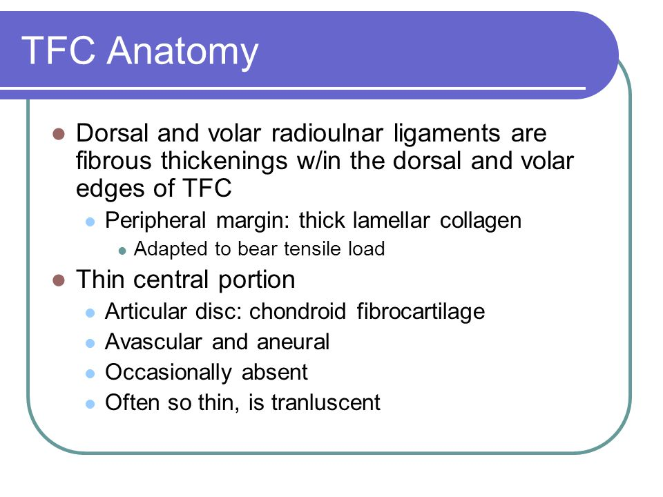 TFC Anatomy Dorsal and volar radioulnar ligaments are fibrous thickenings w/in the dorsal and volar edges of TFC.