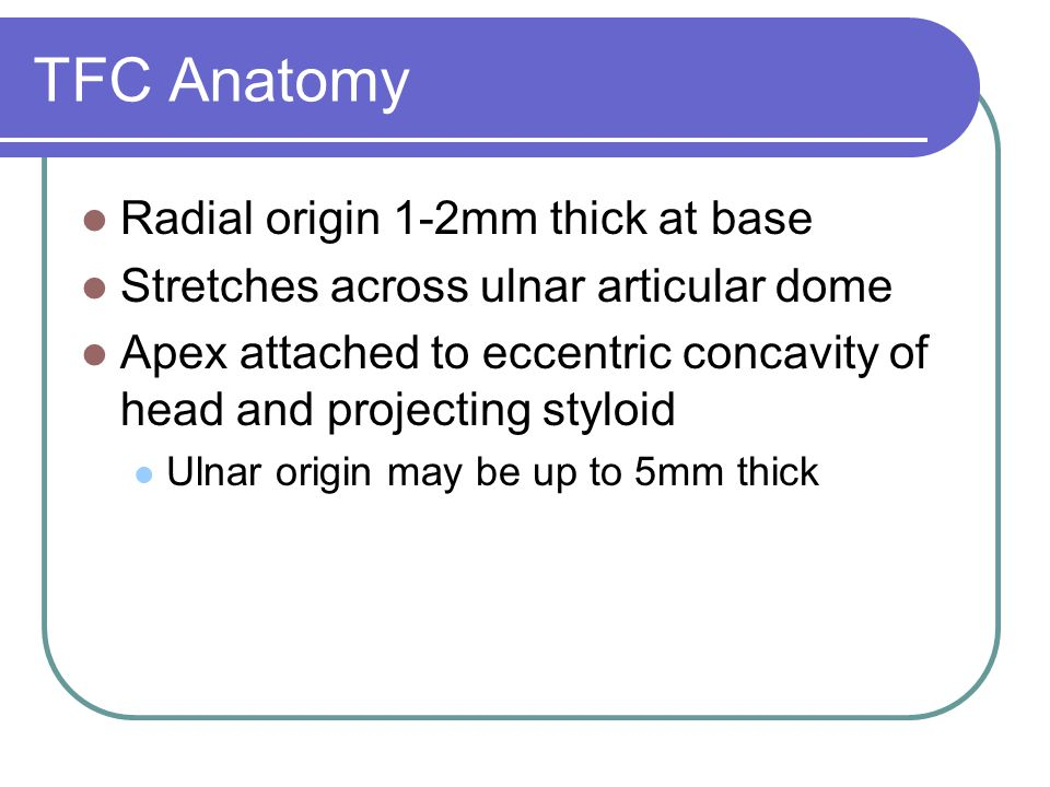 TFC Anatomy Radial origin 1-2mm thick at base