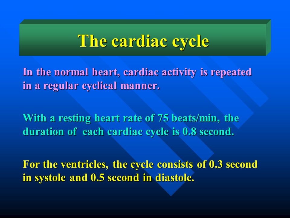 The cardiac cycle In the normal heart, cardiac activity is repeated in a regular cyclical manner.