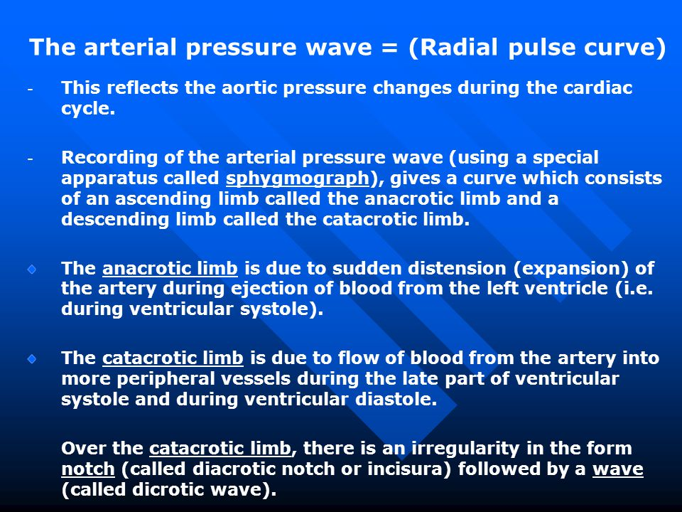 The arterial pressure wave = (Radial pulse curve)