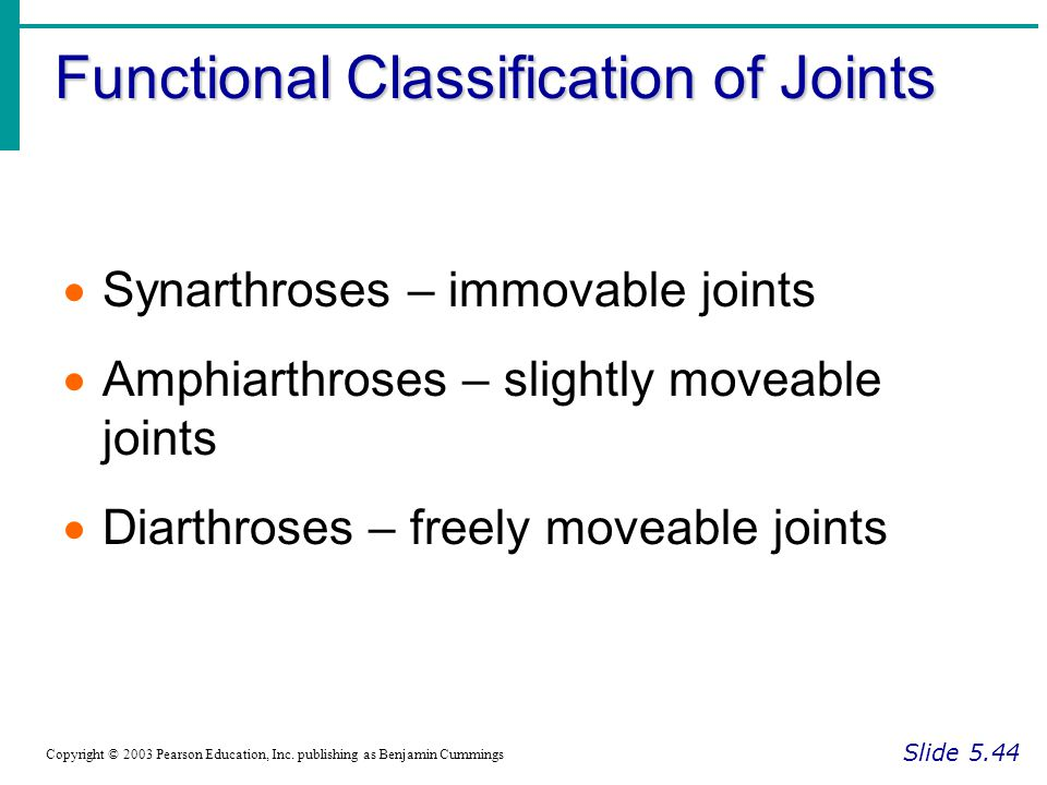 Functional Classification of Joints