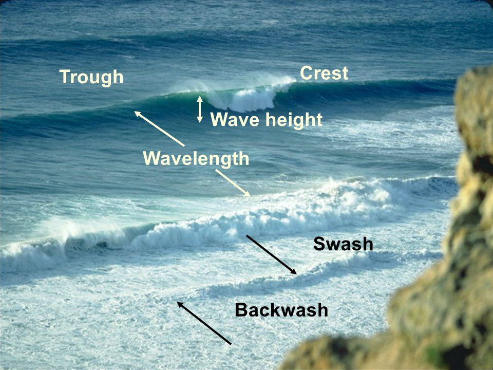 Crest Trough Wave height Wavelength Swash Backwash