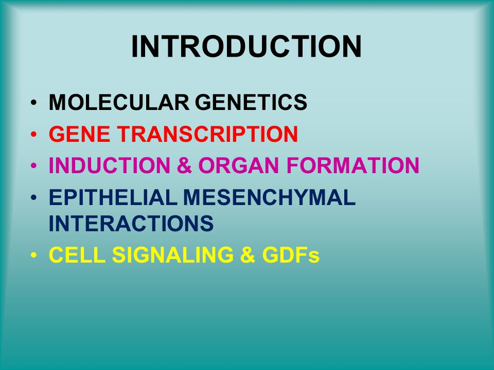 INTRODUCTION MOLECULAR GENETICS GENE TRANSCRIPTION
