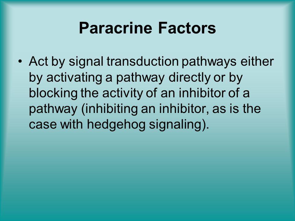 Paracrine Factors