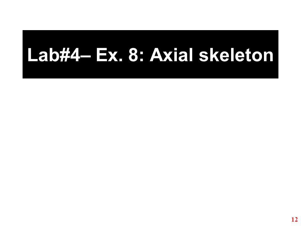 Lab#4– Ex. 8: Axial skeleton