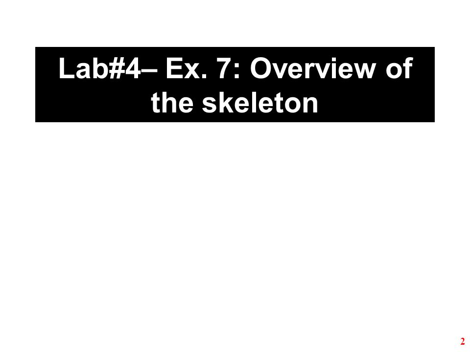Lab#4– Ex. 7: Overview of the skeleton