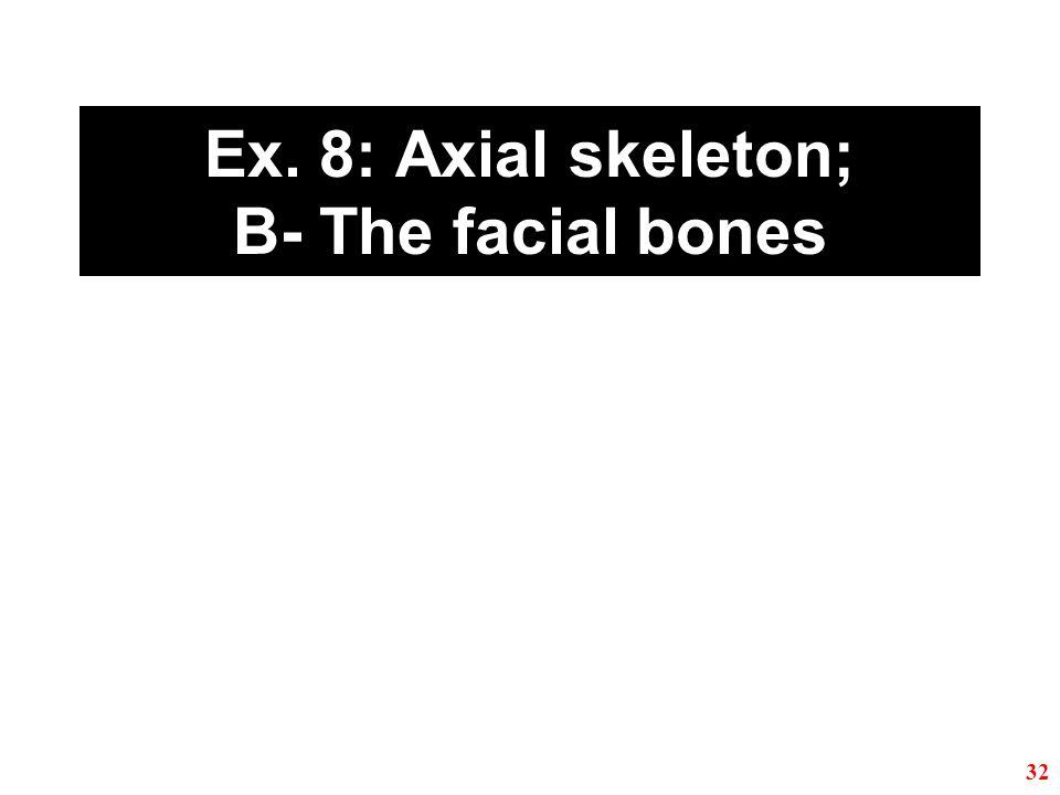 Ex. 8: Axial skeleton; B- The facial bones