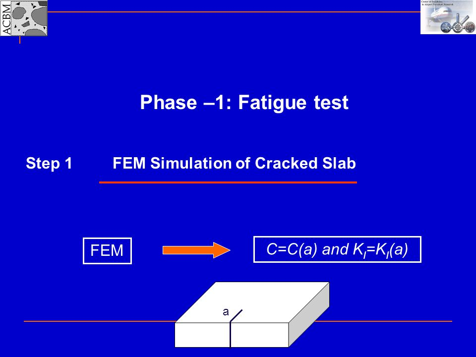FEM Simulation of Cracked Slab