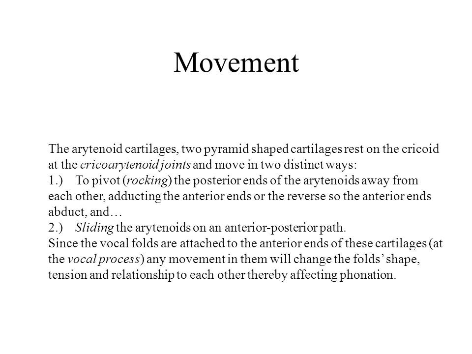 Movement The arytenoid cartilages, two pyramid shaped cartilages rest on the cricoid at the cricoarytenoid joints and move in two distinct ways: