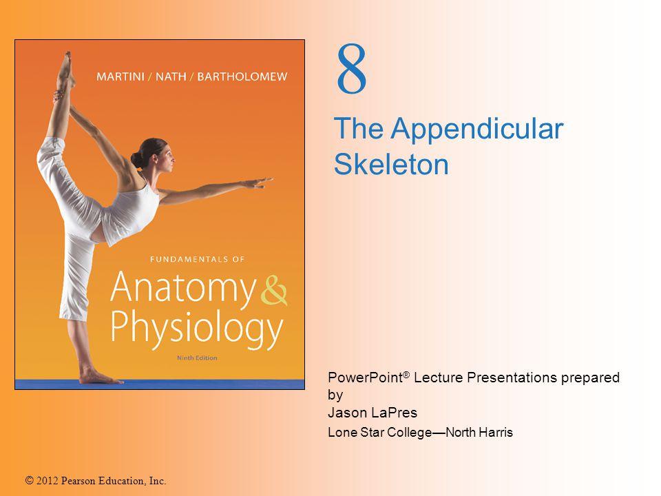 8 The Appendicular Skeleton