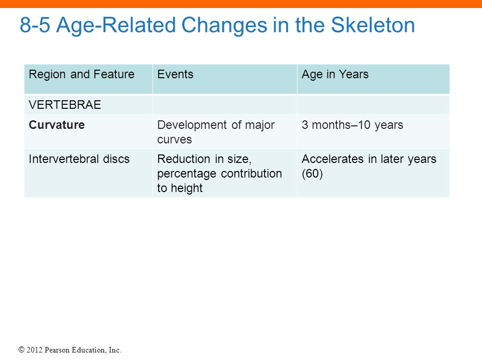 8-5 Age-Related Changes in the Skeleton