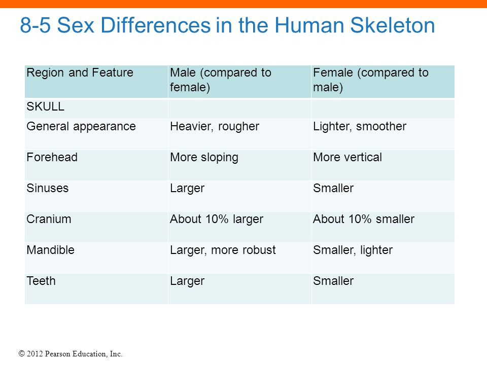 8-5 Sex Differences in the Human Skeleton