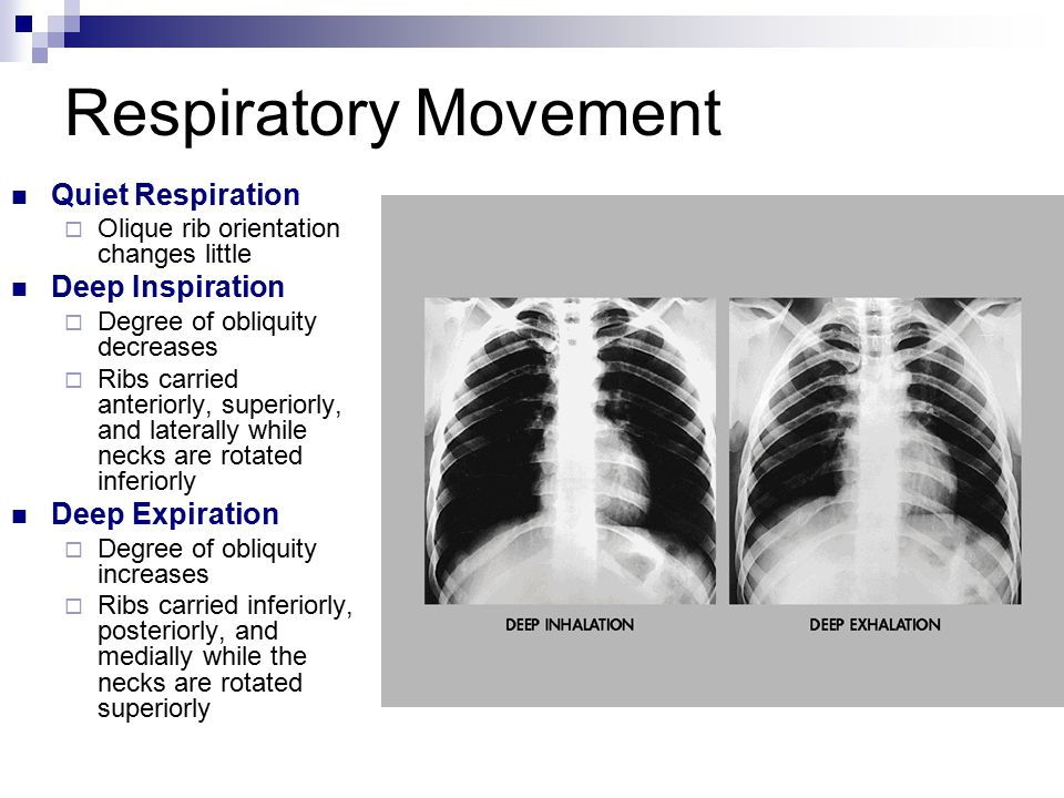 Respiratory Movement Quiet Respiration Deep Inspiration