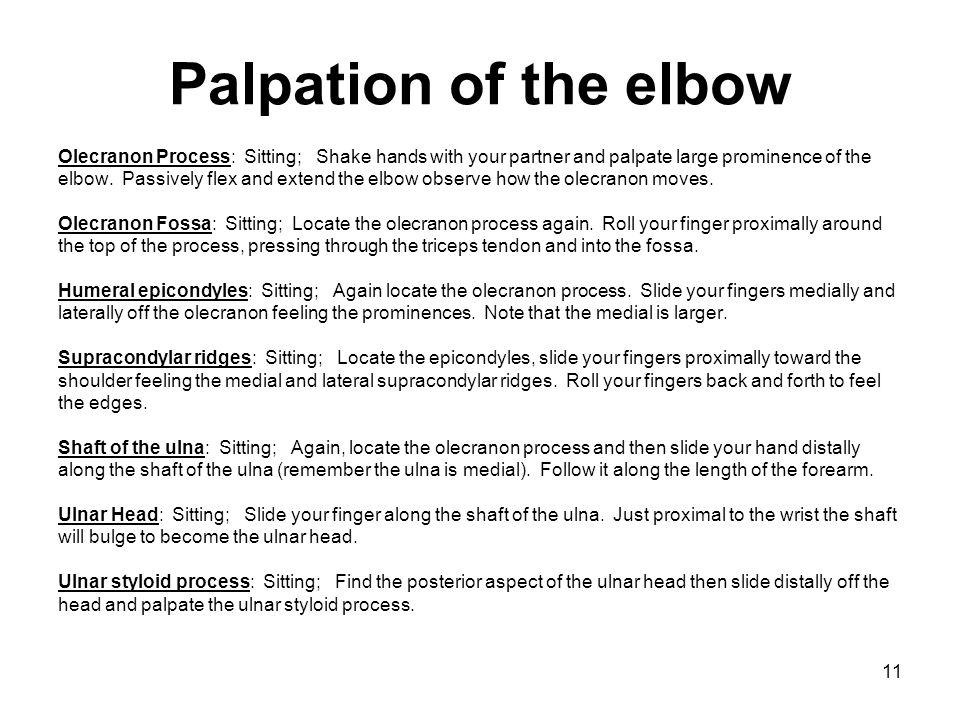 Palpation of the elbow Olecranon Process: Sitting; Shake hands with your partner and palpate large prominence of the.