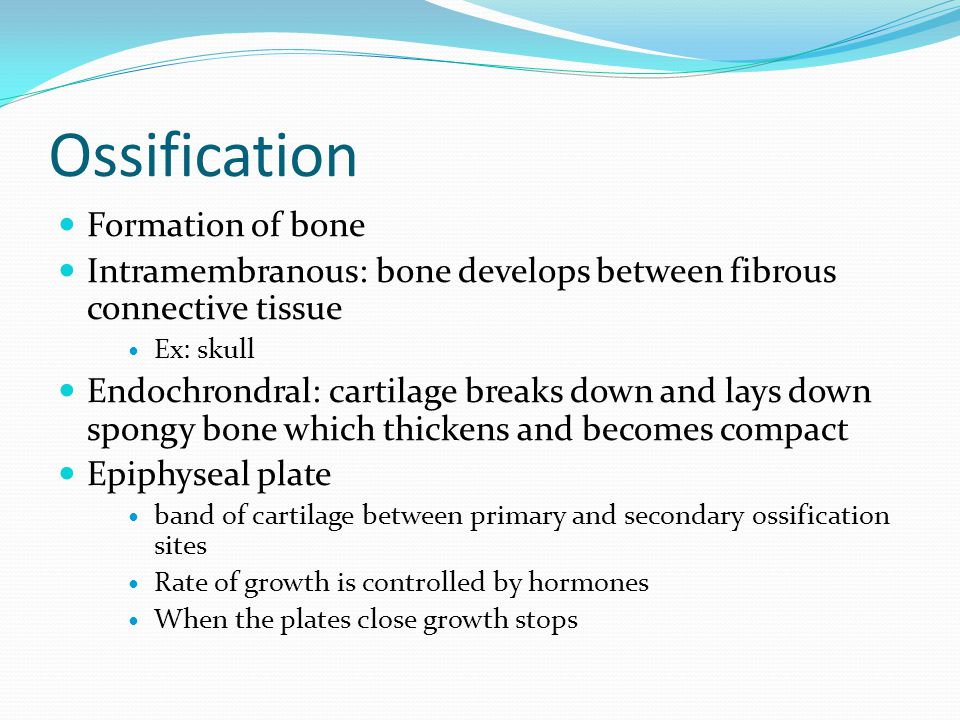 Ossification Formation of bone