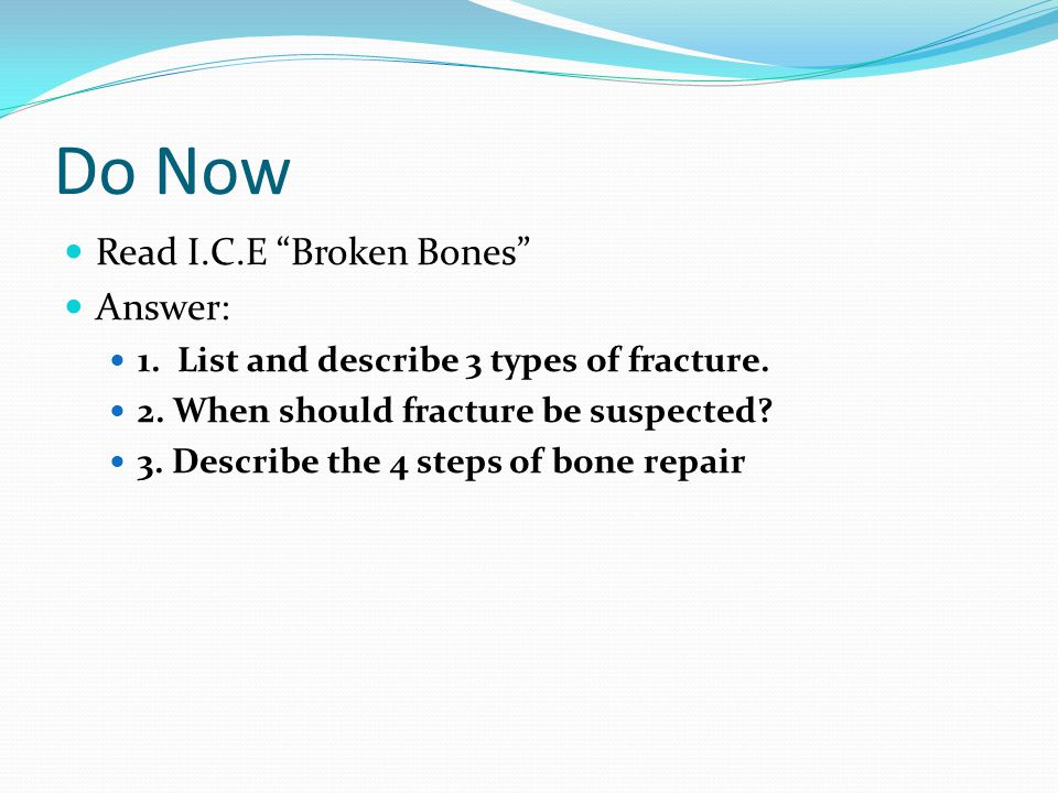 The Skeletal System Chapter ppt download – The Skeletal System Worksheet Answers