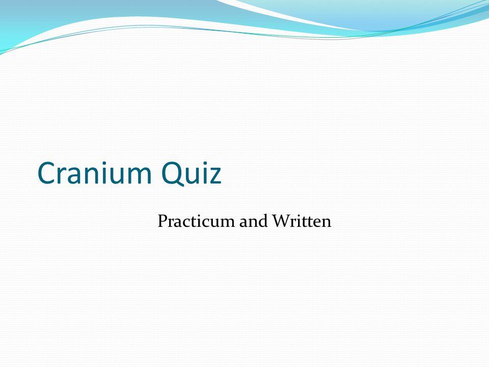 Cranium Quiz Practicum and Written