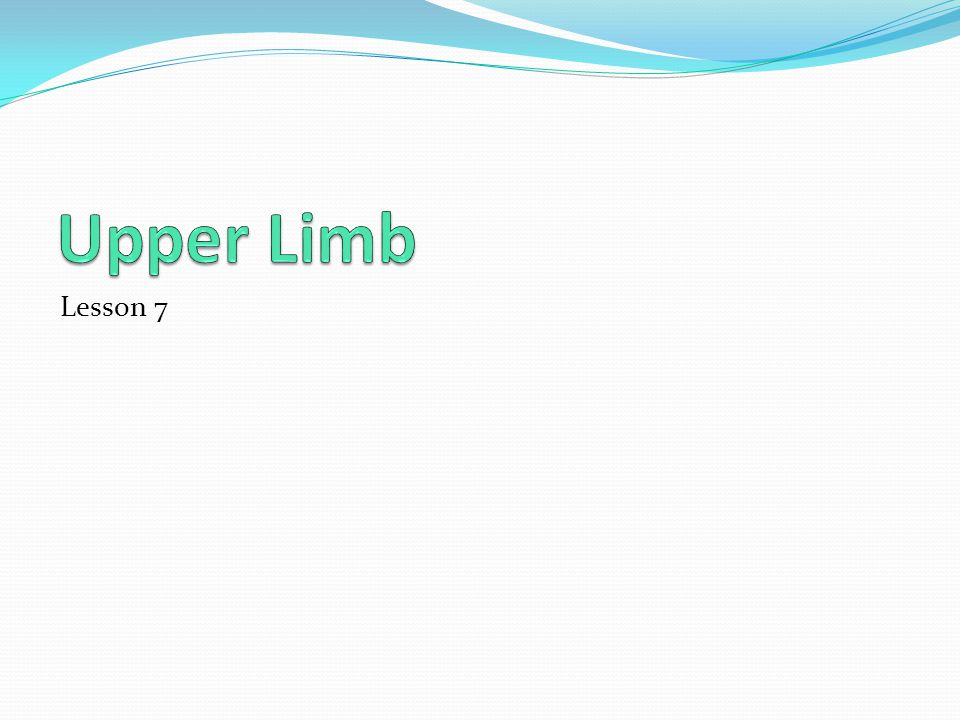 Upper Limb Lesson 7