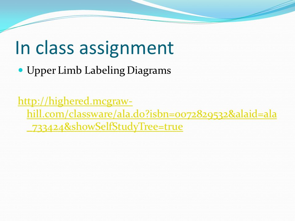 In class assignment Upper Limb Labeling Diagrams