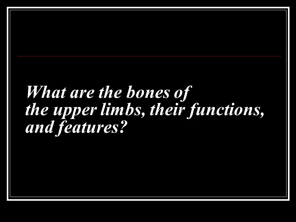 What are the bones of the upper limbs, their functions, and features