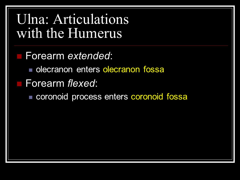 Ulna: Articulations with the Humerus