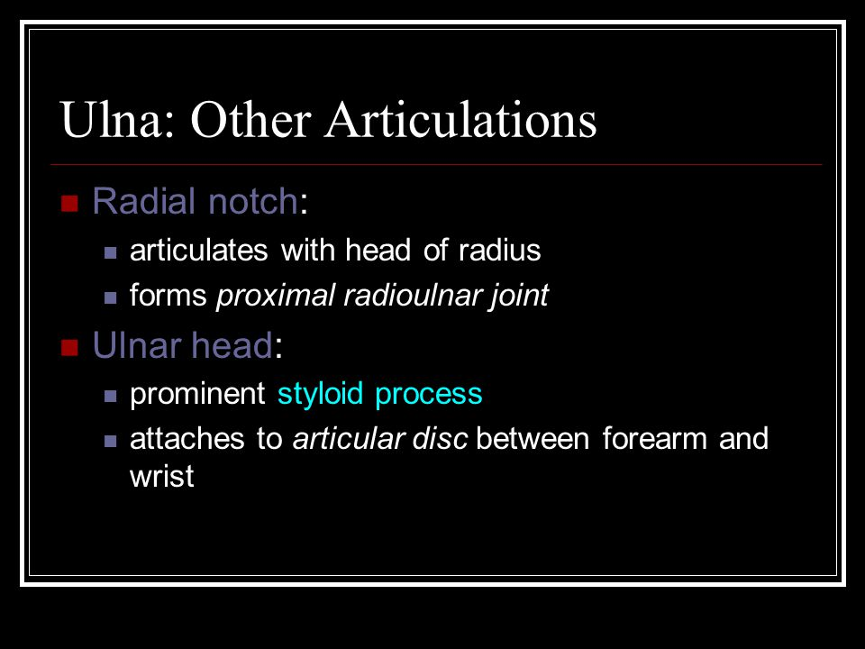 Ulna: Other Articulations