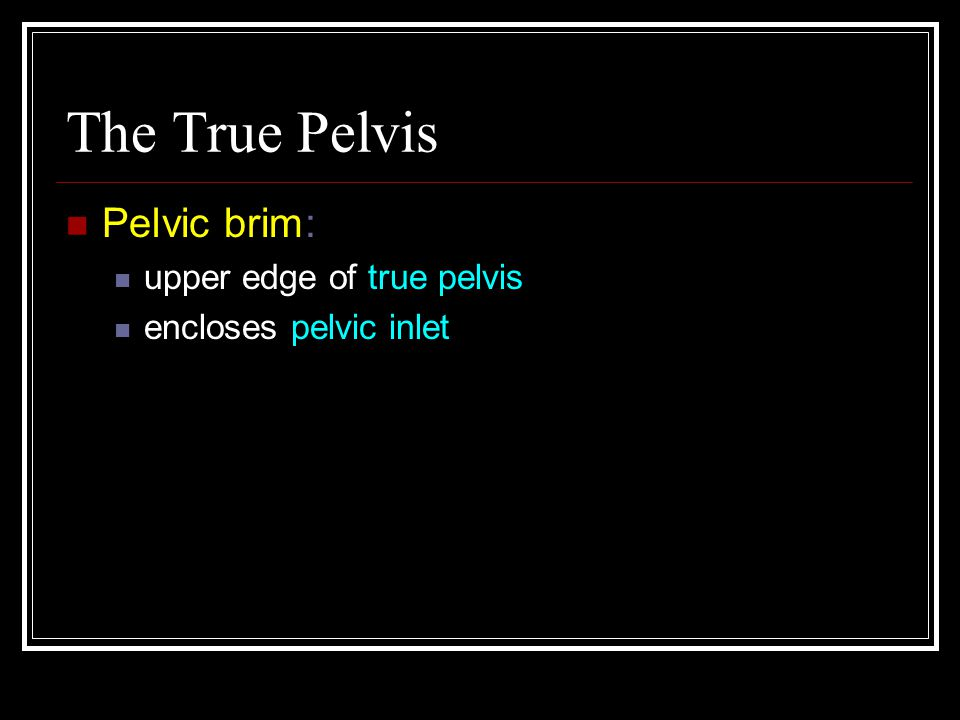 The True Pelvis Pelvic brim: upper edge of true pelvis