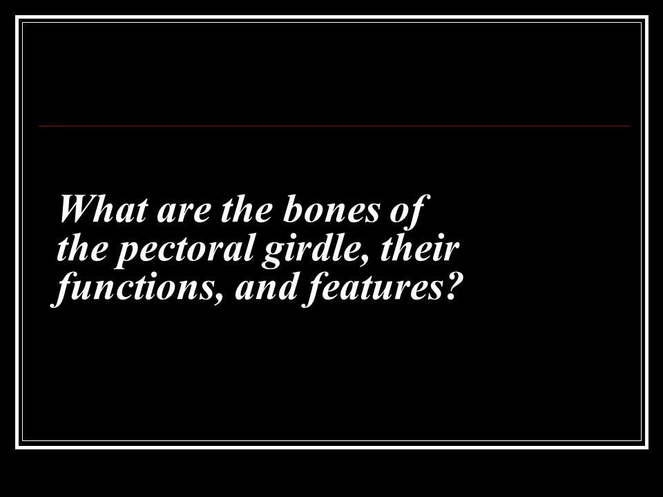 What are the bones of the pectoral girdle, their functions, and features
