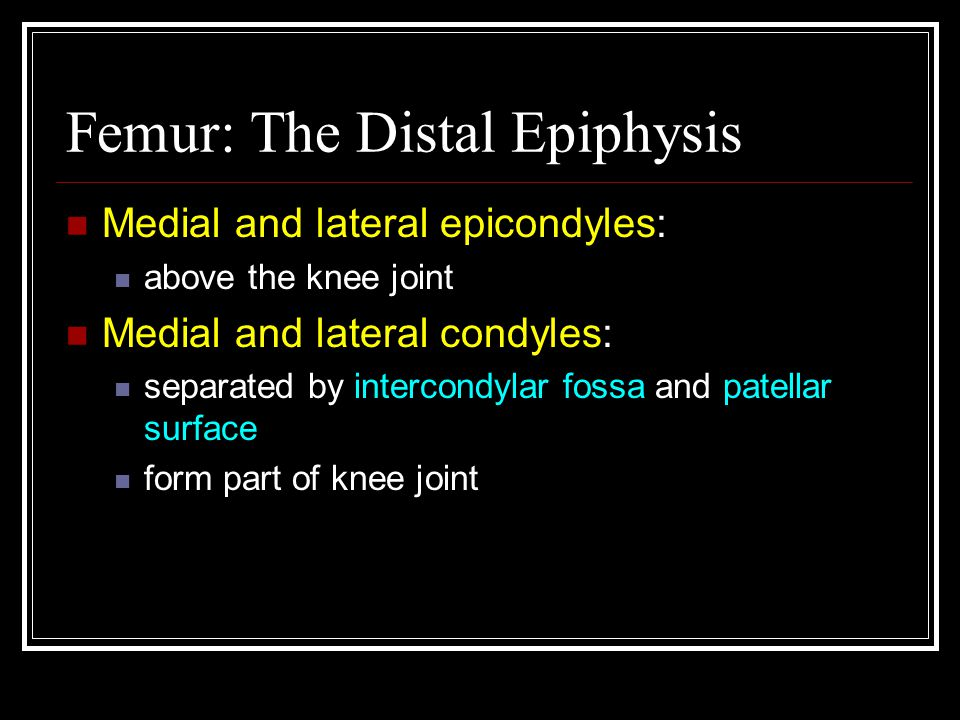Femur: The Distal Epiphysis