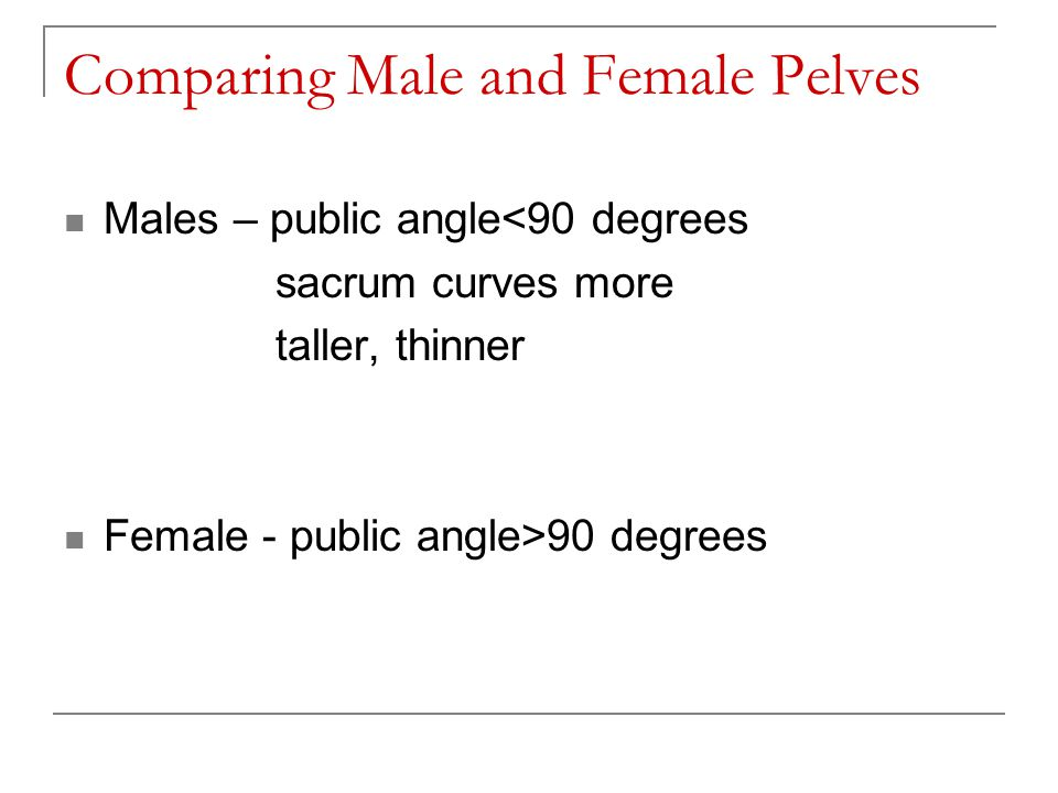 Comparing Male and Female Pelves
